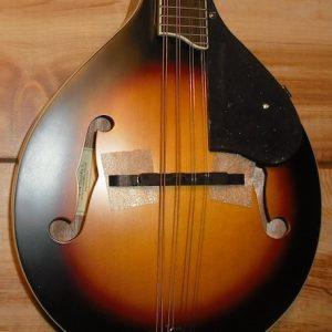Grestch® G9320 New Yorker Deluxe A/E Mandolin 3TSB