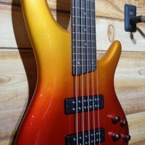 Ibanez SR305E 5-String Electric Bass Guitar Autumn Fade Metallic